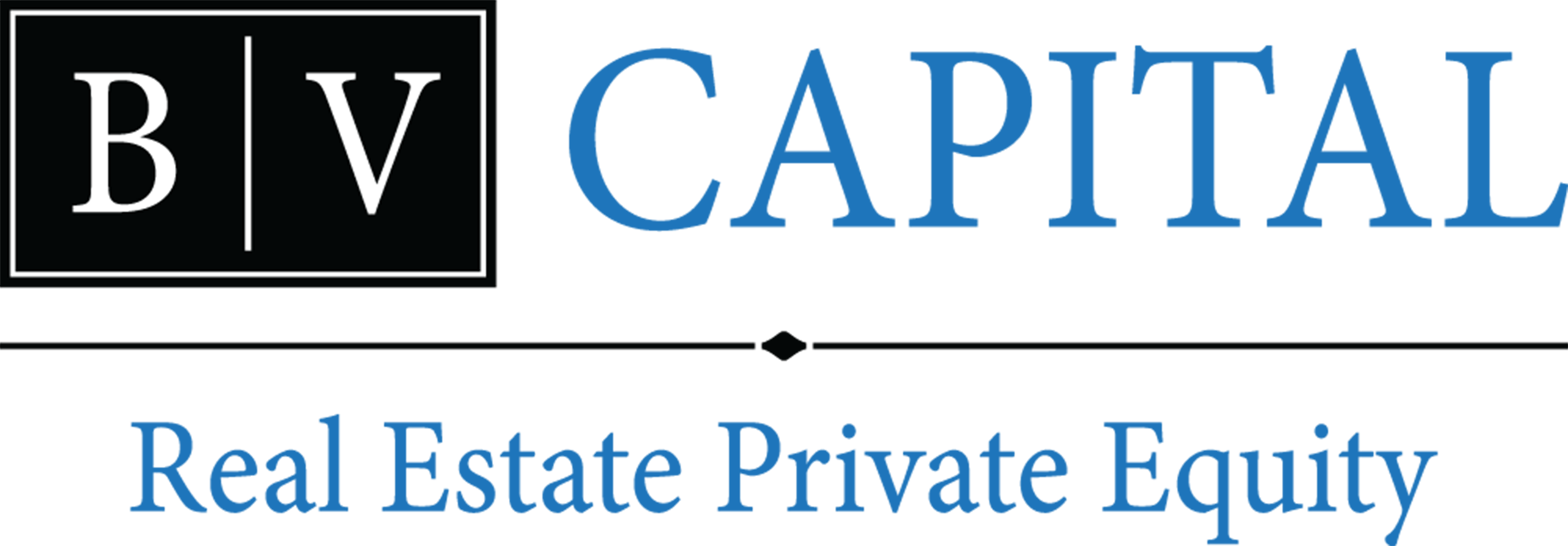 BV Capital Logo